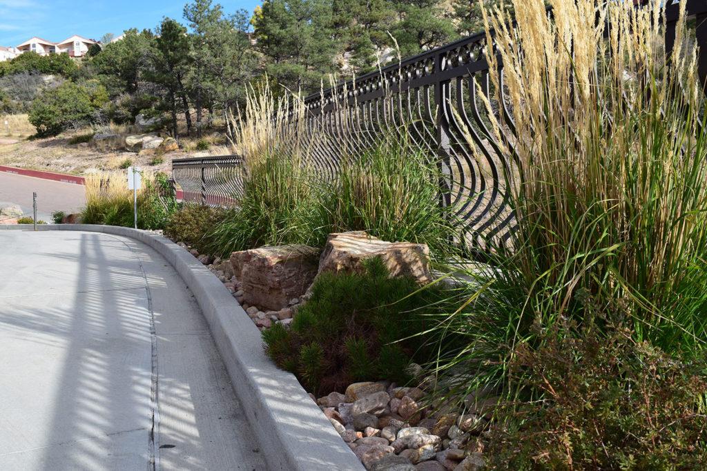 potpg_plants_accent_iron_fence