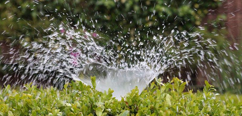 irrigation_800x385